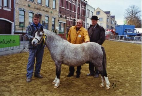 Winnaar paardenkeuring, Sint-Lievens-Houtem, jaren 1990