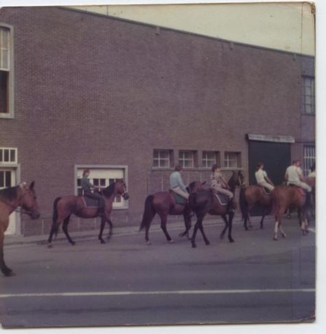 Sint-Fledericusommegang met paarden, Vlierzele, 1977