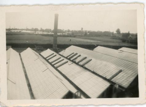 Zicht op serres van de bloemisterij Pieters, Melle, 1940-1948