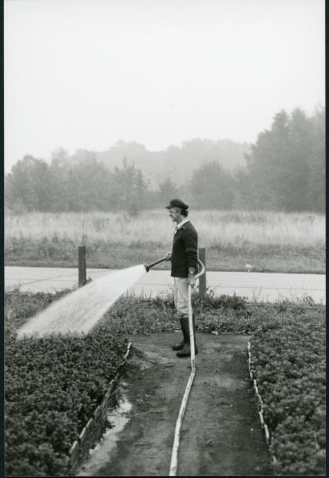 Azalea's gieten door Lucien Debersaques, Destelbergen, 1975-1979