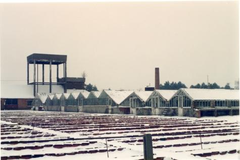 Bloemisterij Debersaques in koude wintertijd, Destelbergen, 1991