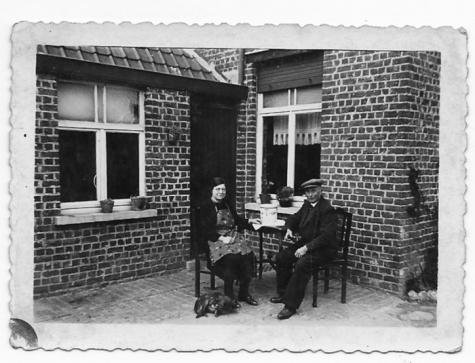 Adrien Rahoens tussen de fruitbomen, Oosterzele, jaren 1950