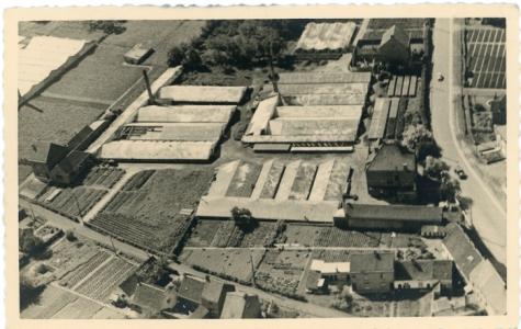 Luchtfoto bloemisterij Volckaert-Ghysels, Merelbeke, 1930-1940