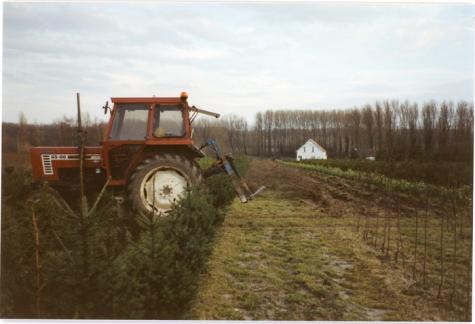 Planten uit grond halen, Oosterzele, 1995.