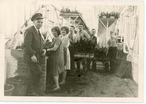 Rieten matten op bloemisterij Van Hecke, Zaffelare, 1940-1950.