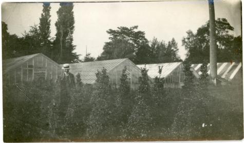 Versierde straten voor pater De Ridder, Sint-Lievens-Houtem, jaren 1955-1960