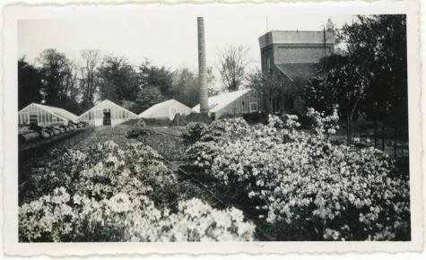 Familie Van Winghem, Sint-Lievens-Houtem, 1956