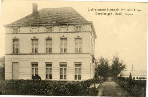 Bloemisterij Lossy, Destelbergen, 1923