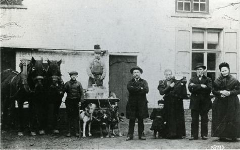 De familie Sedeyn, melkerij, Merelbeke