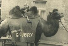 Schepen Christine De Pus als 7-jarige op de kameel van Soubry in de gemeenteschool van Oudegem, 1966