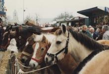 Houtem Jaarmarkt, Sint-Lievens-Houtem, 1995