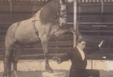 Marino Demeyer in Circus Demeyer tijdens Houtem Jaarmarkt, Sint-Lievens-Houtem, 1922-1928
