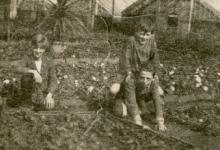 Kinderen tussen de bloemenperken, Zaffelare, 1930-1947