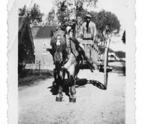 Paard met kar, Oosterzele, 1941
