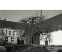 Binnenkoer met zicht op het woonhuis en de stokerij Van Damme, Balegem, 1980