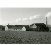 Stokerij Van Damme, zicht van de straatkant, Balegem, ca. 1980