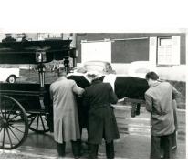 Begrafenis Albert Van Durpe, Vlierzele, 1961