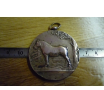 Bronzen medaille ter herinnering aan deelname paardenkeuring, Melle, 1932