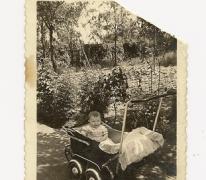 Kinderwagens tijdens de oorlog, Balegem