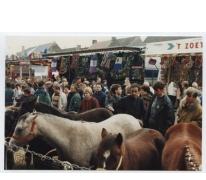 Paarden op Houtem Jaarmarkt, Sint-Lievens-Houtem, 1995