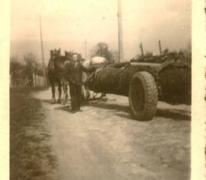 Zoon Gustaaf van houtzagerij D'Hont, Landskouter, 1950-1955