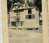 Duiventil, Bambrugge, 1955-1960