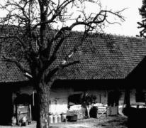 Hof te Letterhoutem, Binnenkoer, Zuidzijde, Sint-Lievens-Houtem
