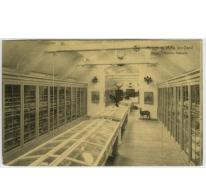 Natuurhistorisch museum van het College te Melle