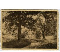 Park van het College te Melle