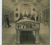 Natuurhistorisch museum van het College te Melle in 1907