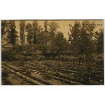 Zicht op de botanische tuin van het college te Melle