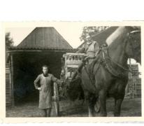 Transport per paard en kar, Balegem, 1952