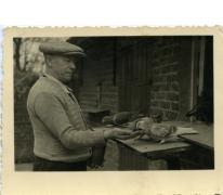Dooreman Jozef aan duivenkot, Sint-Lievens-Houtem, 1951