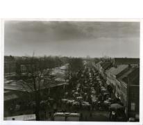 Houtem Jaarmarkt met koeien op straat, Sint-Lievens-Houtem, datum?