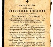 Bidprentje van Augustin Gyselinck, 1895, Melle