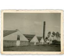 Zicht op serres bloemisterij Pieters, Melle, 1938-1940