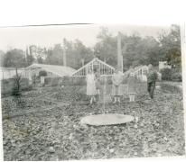 Bloemisterij Puimège met serres, Zaffelare, 1930-1947