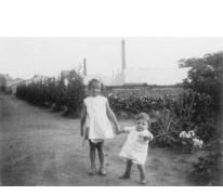 Kinderen Volckaert op de bloemisterij, Merelbeke, 1928