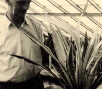 Bloemist Leon Volckaert, Merelbeke, jaren 1950 (?)