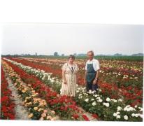 Noël De Neve en echtgenote tussen rozenstruiken, Oosterzele, 1995.
