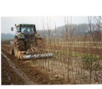 Schade op boomkwekerij De Moor, Oosterzele 1995.