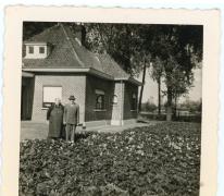 Laurier op bloemisterij Van Hecke, Zaffelare, 1910-1920.