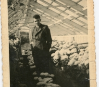 René Van Hecke tussen azalea's, Zaffelare, jaren 1960.