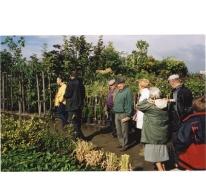 Opendeurdag boomkwekerij De Moor tijdens 'Op de Siertoer', Oosterzele, 2001
