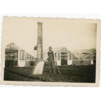 Postkaart van de oogst van de bieten op het veld, PC Caritas Melle, 1900-1913.