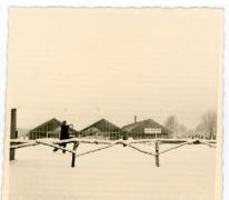 Serres van bloemisterij Roggeman, Heusden, 1968