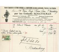 Factuur bloemisterij Schatteman, Destelbergen, 1938