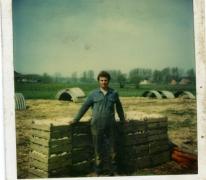 Antoine Van De Keere aan geoogst witloof, Sint-Lievens-Houtem, jaren 1970