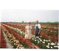 Noël De Neve en echtgenote tussen rozenstruiken, Oosterzele, 1995