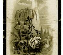 Bidprentje van Alois Gaston De Buysscher, St- Lievens- Houtem, 1921